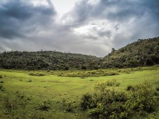 Naivasha Trail Run