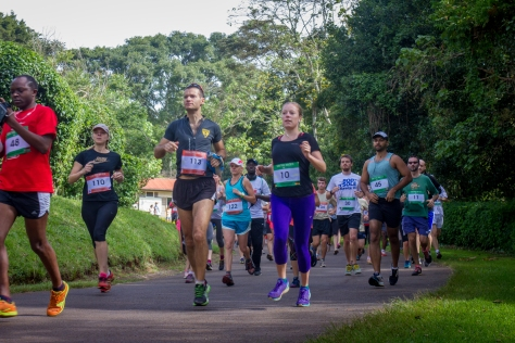 Tigoni Trail Run 2015